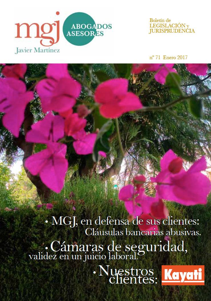 MGJ Abogados Boletín. Enero 2017