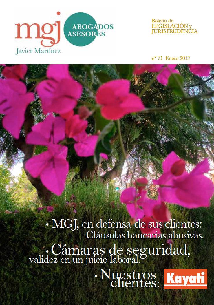 MGJ Boletín Enero 2017